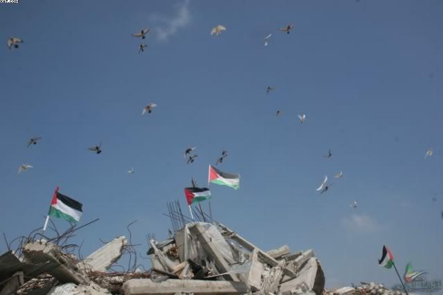 شعر الحرب على غزة