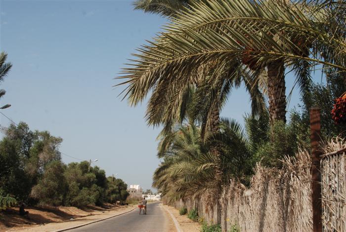 قرية المصدر