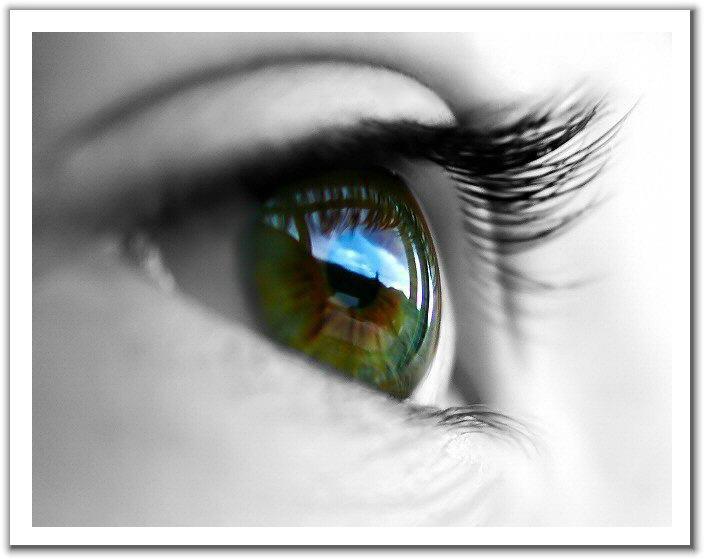 Photo of لغة العيون..أبلغ من الكلام
