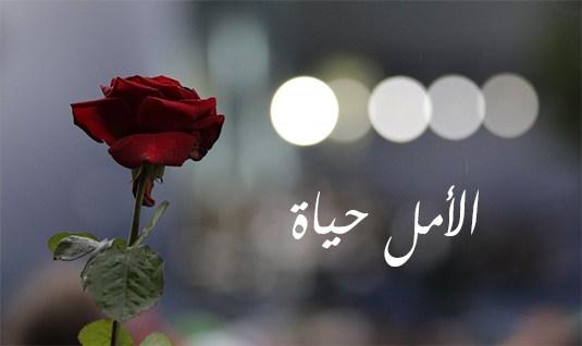 Photo of دثروا الآلام بالآمال ..