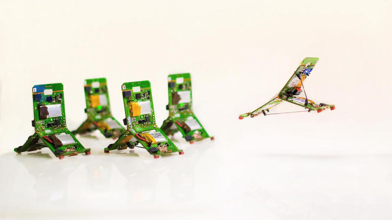 Photo of علماء يبتكرون روبوت مستلهم من «النملة» بوزن 10 غرامات!!