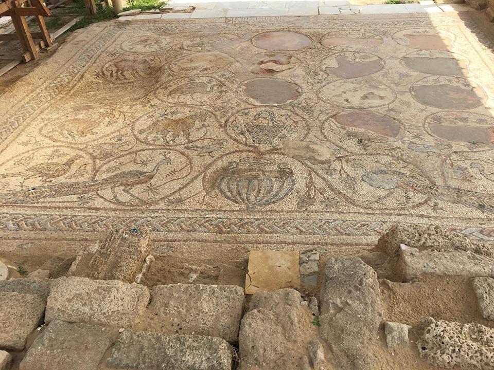 Photo of تل أم عامر .. قطعة من التاريخ في منطقة النصيرات