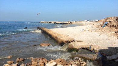 Photo of بحر غزة مستنقع للأوبئة